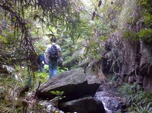 野人部落之徒步溯溪穿越
