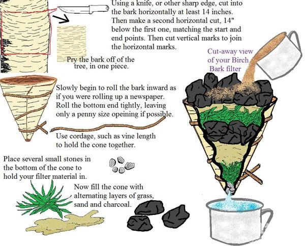 野外求生技能:桦树皮滤水器制作