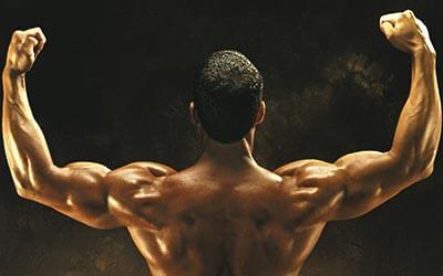 肌肉知识:三角肌