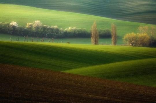 画布中走出的风景托斯卡纳