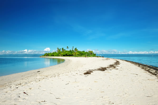 clipperton_island_beach