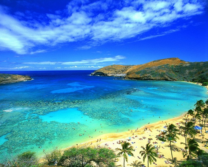 great-beach-hawaii-picture