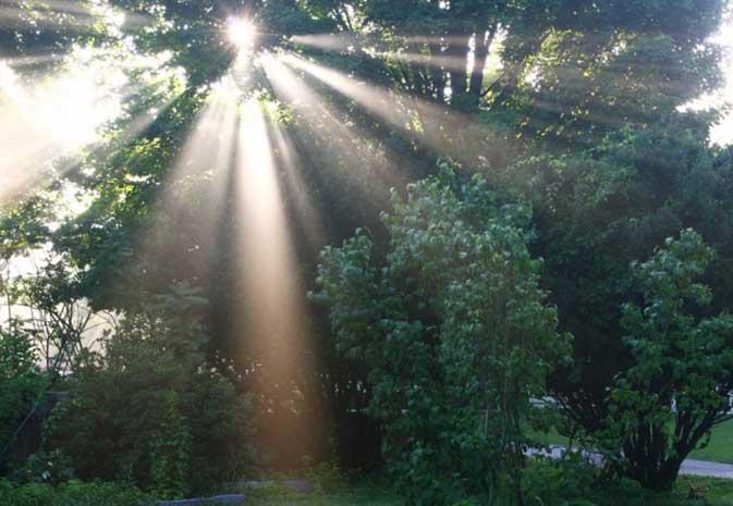 如何拍摄太阳光芒