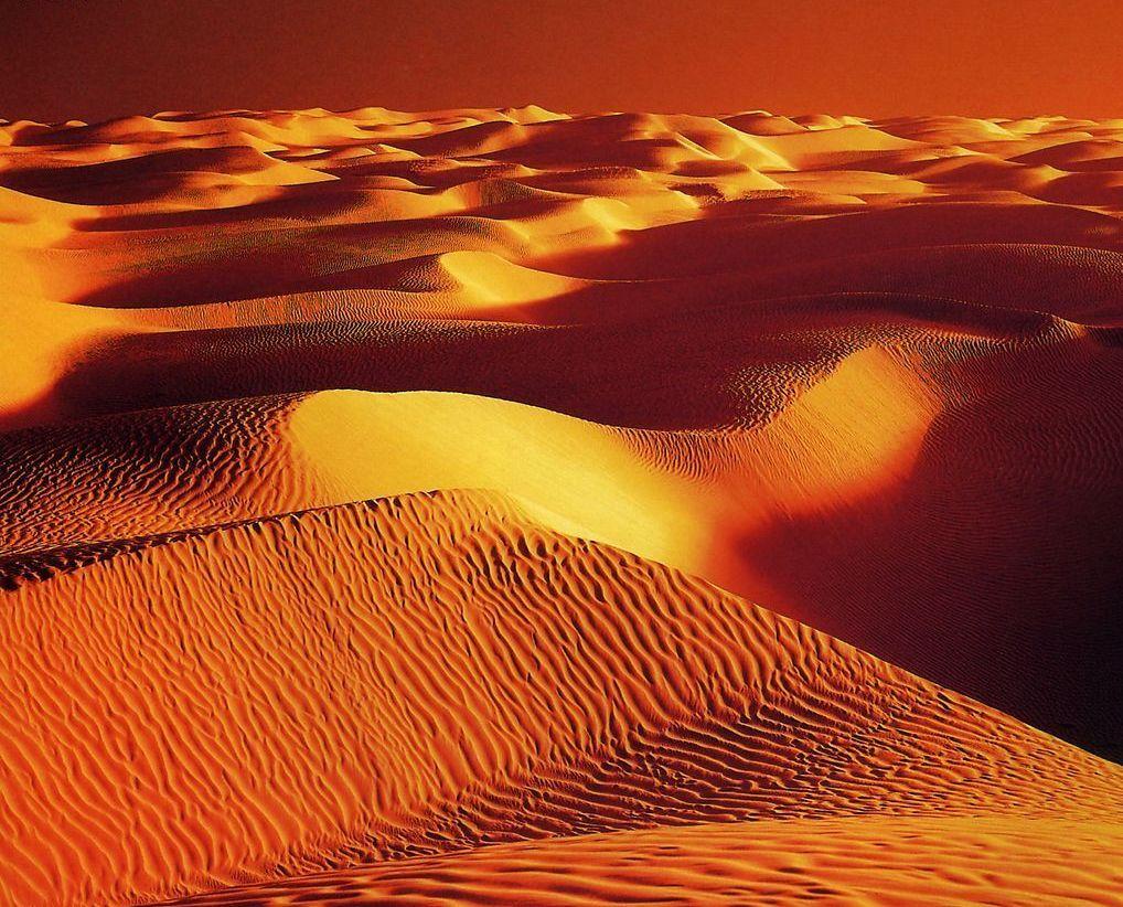 沙漠情歌 简谱歌谱