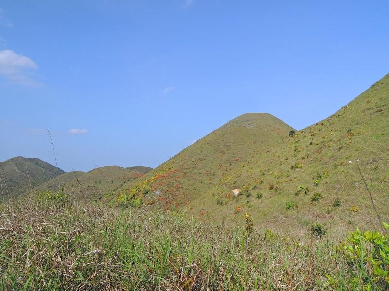 麒麟山风景