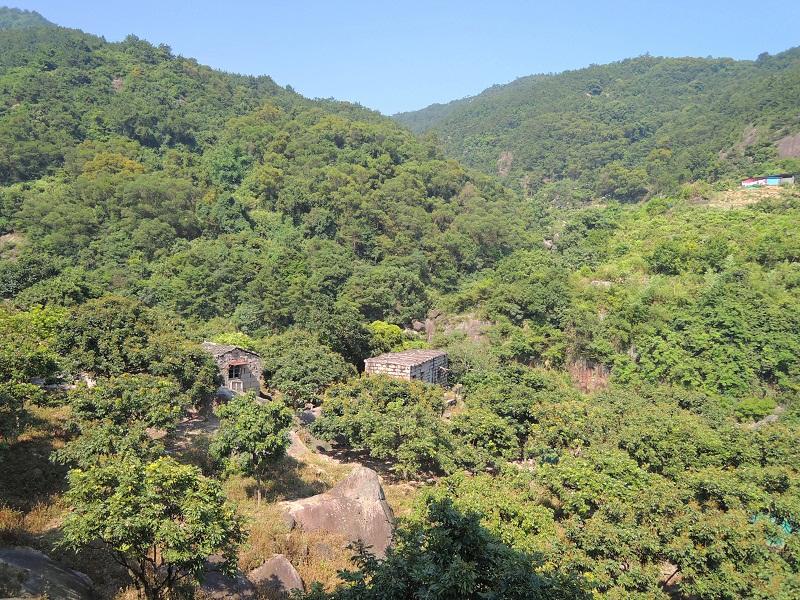 磨溪 果园