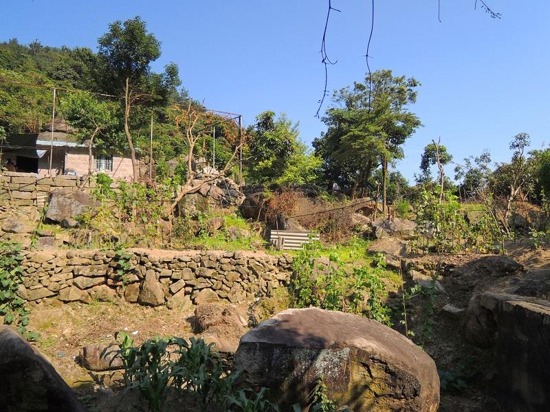 磨溪 私人果园