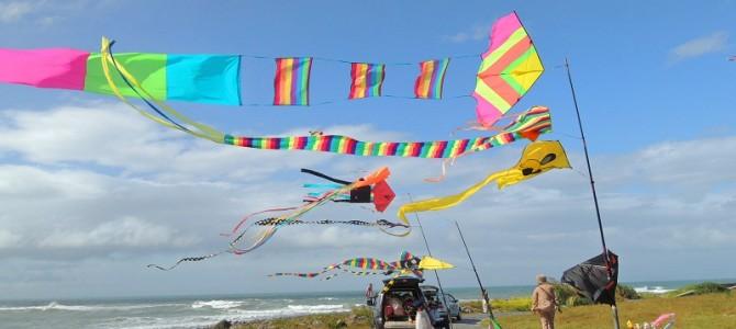 白沙湾特技风筝2