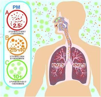 雾霾 PM2.5对人体的危害