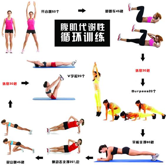 腹肌代谢性循环训练