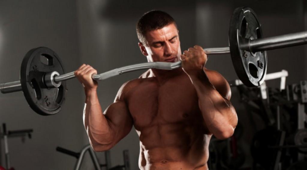 杠铃弯举训练肱二头肌