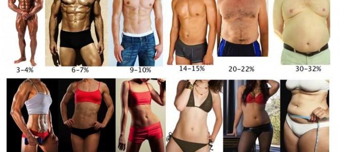 体脂率图 估算你的体脂率范围