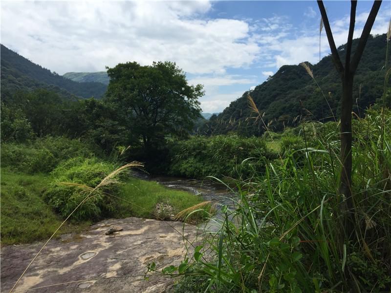 小溪 河床