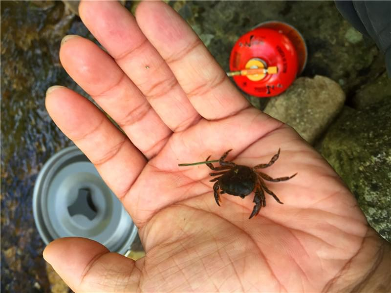 24段魔尺变螃蟹图解