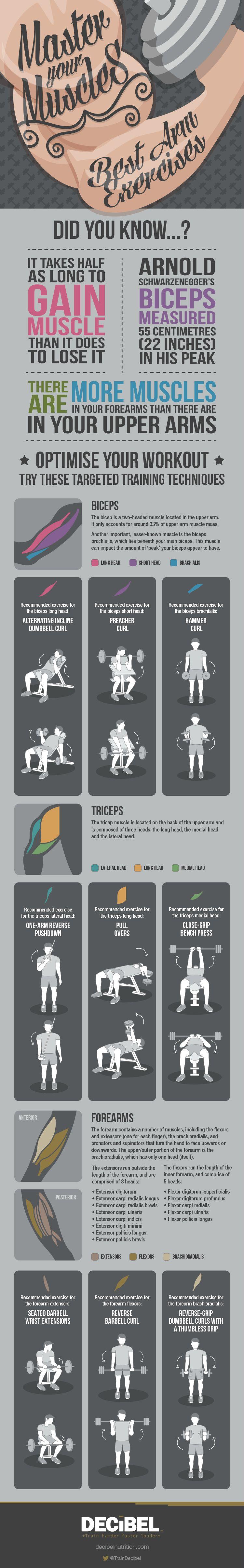 手臂肌肉锻炼指导书