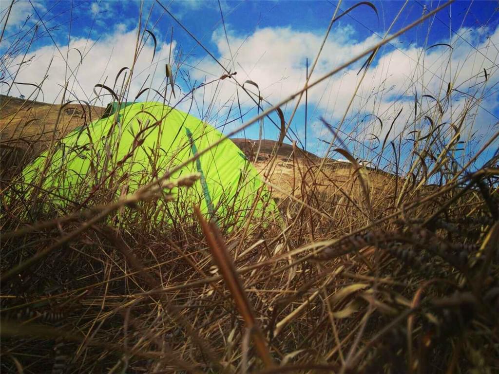 杉洋白溪草场风景