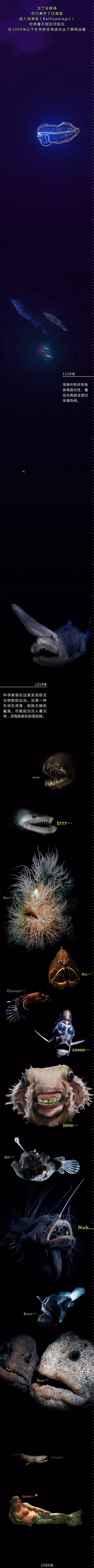 下潜至海底一万米,能看到最后的我服!