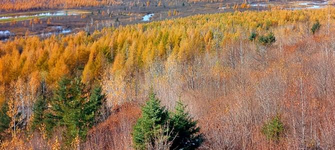 北方及以北的秋