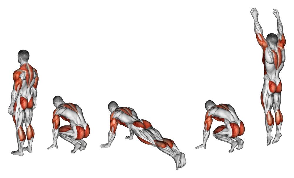 立卧撑锻炼哪些肌肉