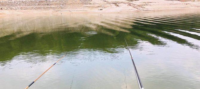 野外钓鱼如何选择正确的钓点?