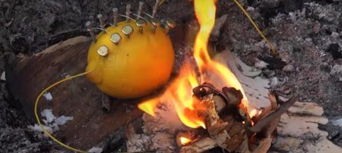 真的假的?野外求生柠檬也能取火?