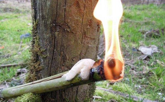 野外求生自制火把