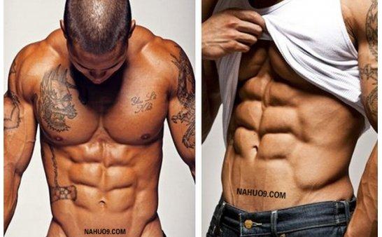 男人健身房宝典