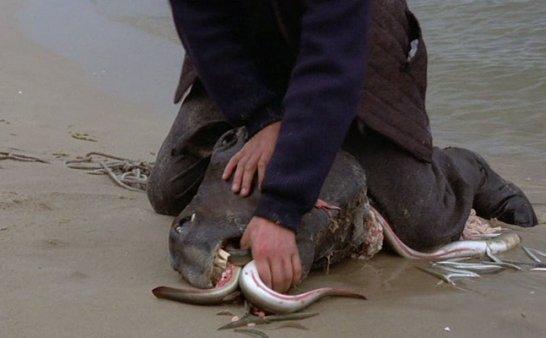 最恶心的捕鱼方法,关键时刻可能救你一命