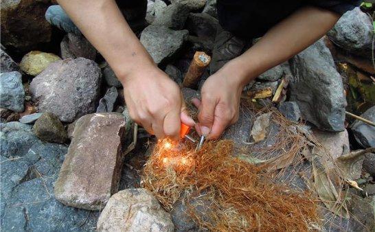 野外求生技巧:利用松脂自制火把