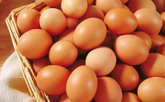 土鸡蛋真比洋鸡蛋更营养吗?